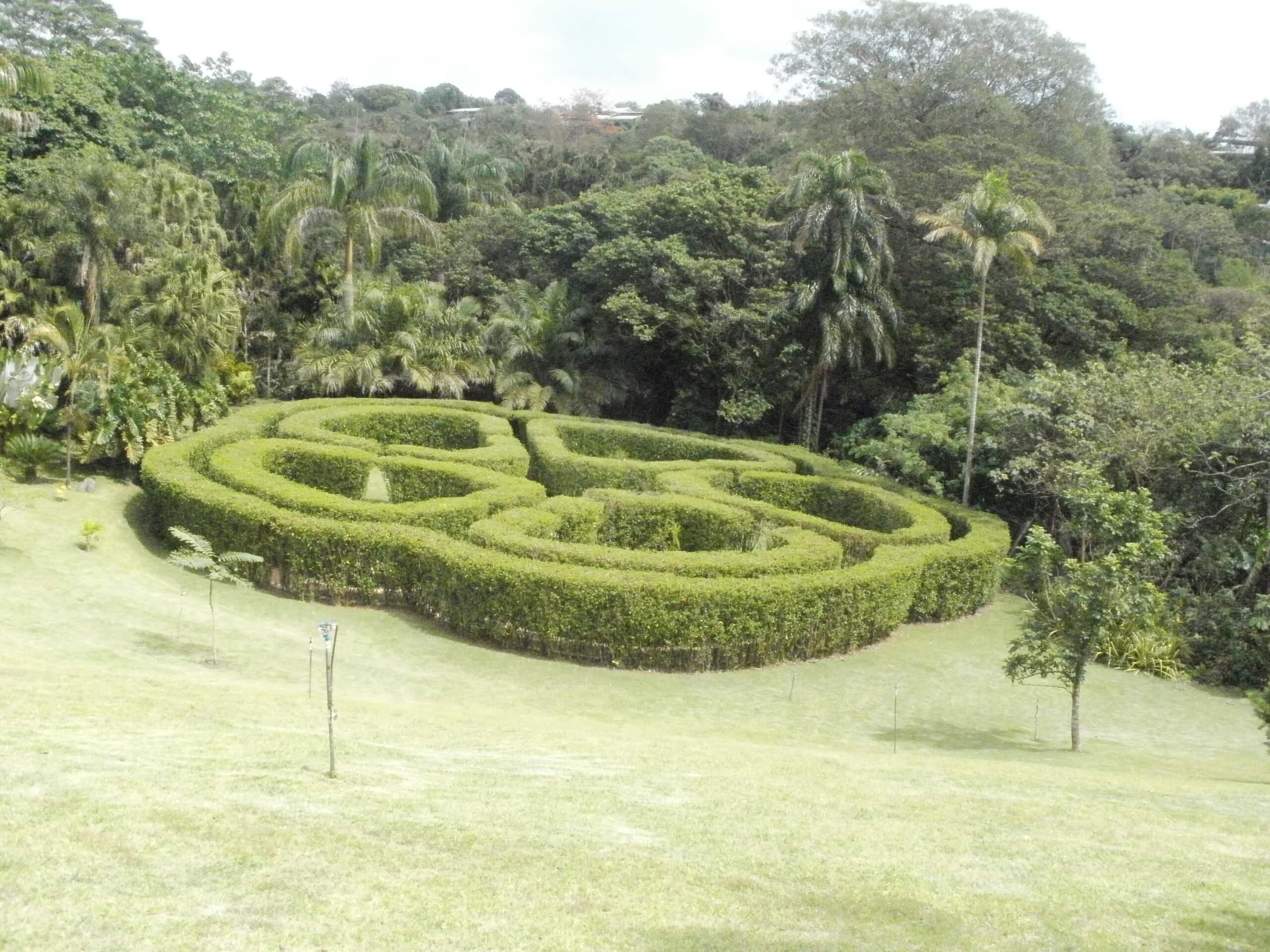 jardin-botanico-else-kientzler